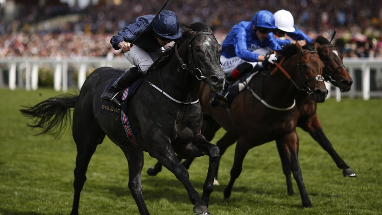 Caravaggio (left) wows on day four with a blistering victory in the Commonwealth Cup