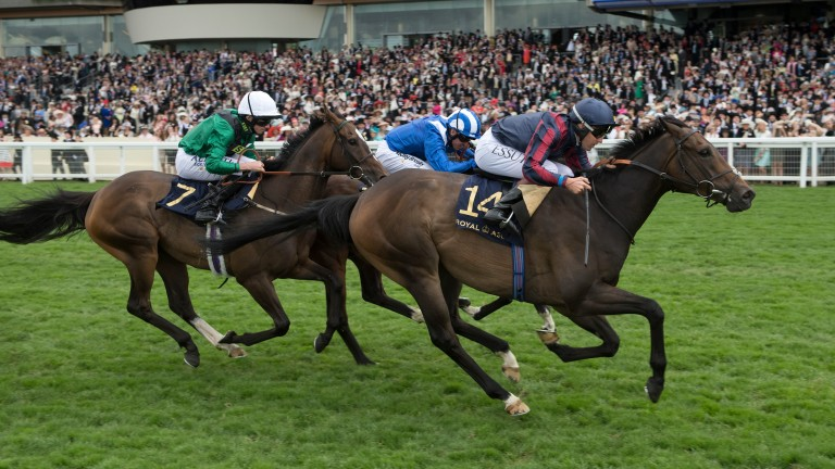 The Tin Man (Tom Queally) wins the Diamond Jubilee Stakes from Tasleet and LimatoRoyal Ascot 24.6.17 Pic: Edward Whitaker