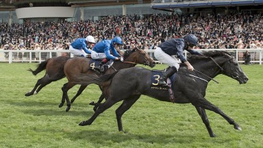 Caravaggio beats Harry Angel and Blue Point in a thrilling Commonwealth Cup. It should be possible to know what the pace breakdown was