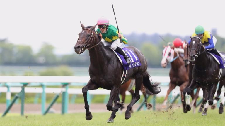 Satono Crown quickens clear in impressive fashion