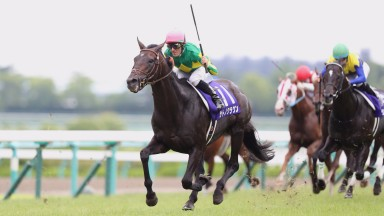 Satono Crown quickens clear in impressive fashion