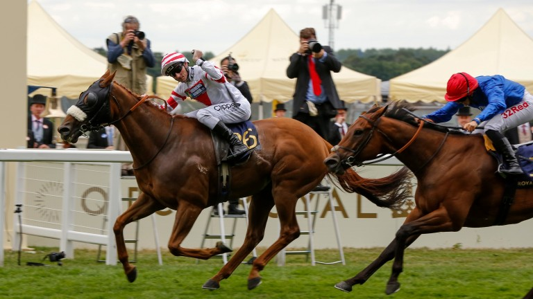 So near yet so far: Josephine Gordon beaten a half-length on Steady Pace in the Wokingham as Daniel Tudhope celebrates his first Royal Ascot victory on Out Do