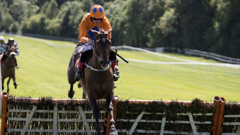 Nessun Dorma: winning impressively at Gowran Park