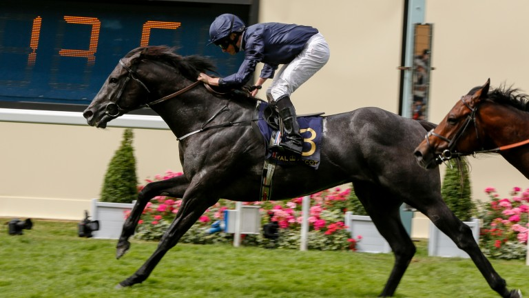 Caravaggio goes up to a mark of 122 after his Commonwealth Cup success