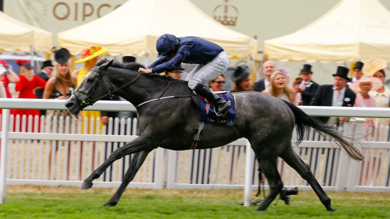 Winter: Coronation Stakes heroine was, again, too good for her rivals