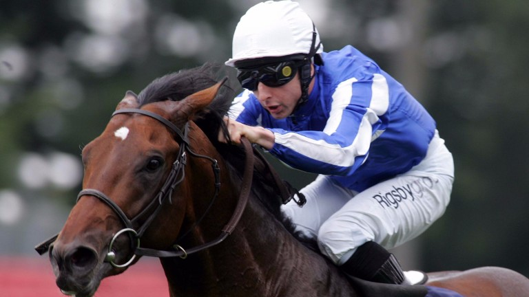 Youmzain: was a dual Group 1 winner before retiring to stud