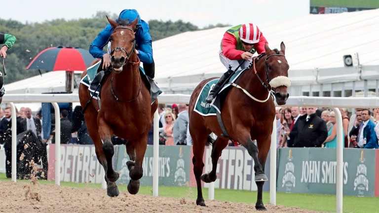 Seamour (right) had looked a likely winner of last year's Plate but was denied by Antiquarium