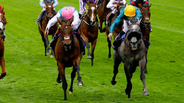 Coronet - Olivier Peslier wins from Mori - Pat SmullenThe Ribblesdale Stakes (Group 2) Royal Ascot 22/6/2017©cranhamphoto.com