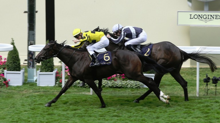 Alpha Centauri (far side) goes down narrowly to Different League in the Albany Stakes