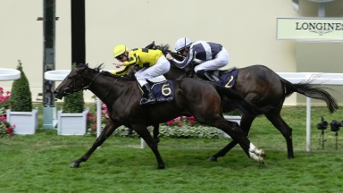 Royal Ascot Fri 23 June 2017 Picture: Caroline Norris     Different League ridden by Antoine Hamelin winning The Albany Stakes from Alpha Centauri ridden by Colm O'Donoghue, 2nd.