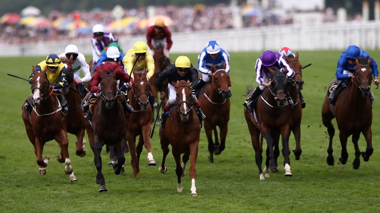Stradivarius (yellow cap) beats Count Octave (maroon) in the Queen's Vase at Royal Ascot