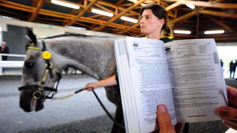 A catalogue page is looked at as a lot at the Derby Sale walks past