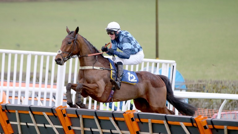 Ryan Nichol winning on Seemorelights at Kelso in January