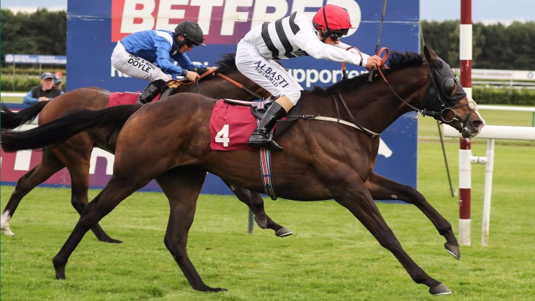 Tristan Price scores on Ray's The Money at Haydock, taking his win tally to two