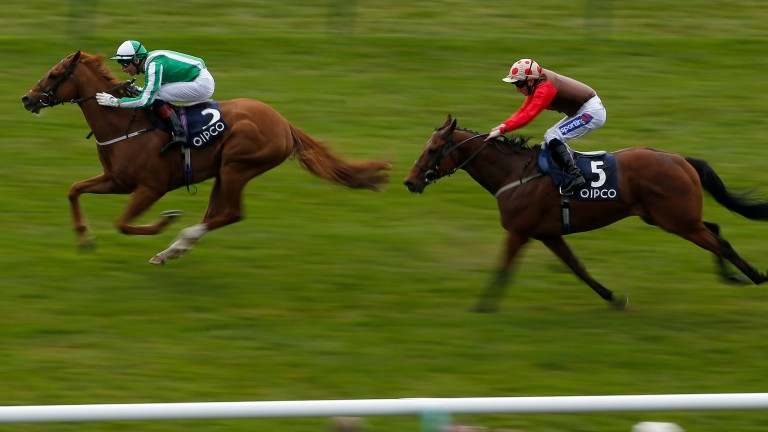 Gerald Mosse showing his winning style on Mr Lupton at Newmarket in May