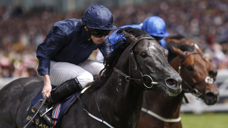 Caravaggio and Ryan Moore edge out Harry Angel in the Commonwealth Cup