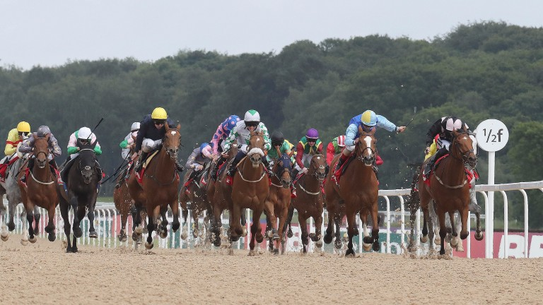 Dannyday (left, yellow cap): won the Northumberland Vase at Newcastle in June 2016 and returned to action at Goodwood last month