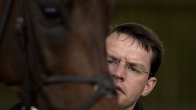 Aidan O'Brien: a living legend in the racing world