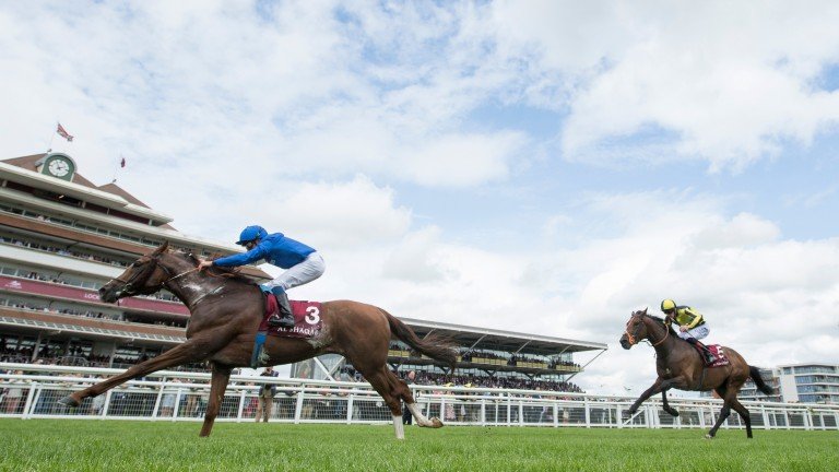 Hawkbill beats My Dream Boat to win the Aston Park Stakes at Newbury in May