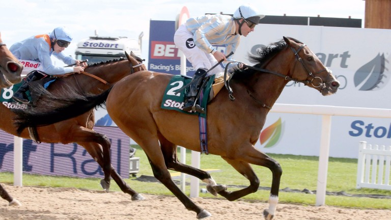 Higher Power and Tom Queally winning the Northumberland Plate