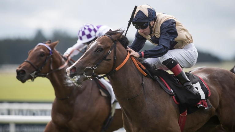 Beckford gives his sire Bated Breath a first Group success in the Railway Stakes