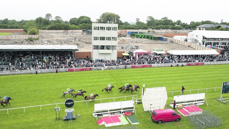 Just 5,412 people turned up to watch Capri win last year's Irish Derby at the Curragh
