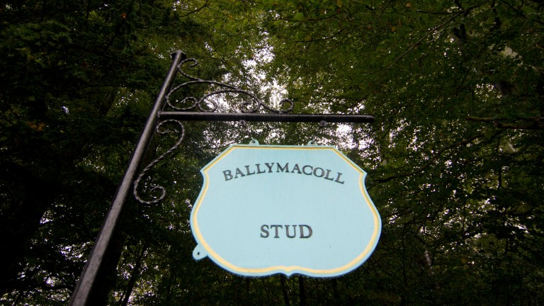 Ballymacoll Stud changed hands for €8.15 million on Tuesday