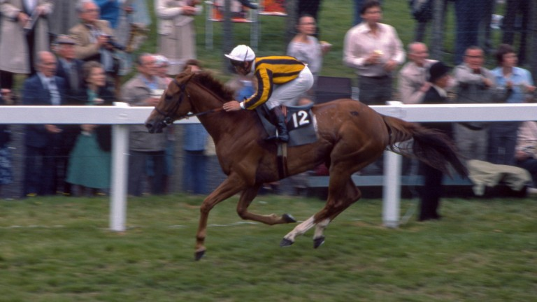 Stanerra wins the 1983 Hardwicke Stakes at Royal Ascot