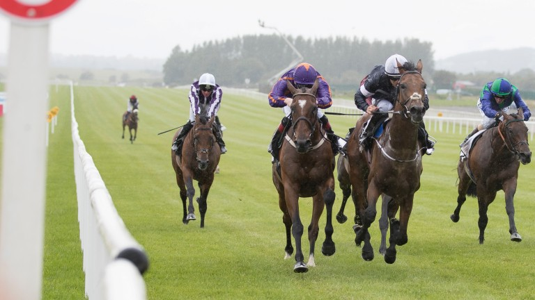 Rekindling (second right) wears down Wicklow Brave in the Curragh Cup