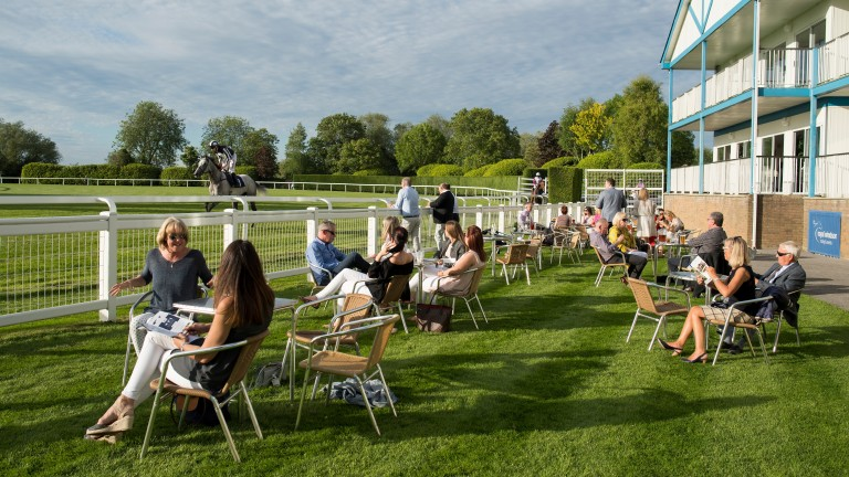 If you're planning a sunny Sunday racing with the family, options are limited