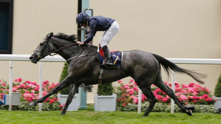 Winter: star miler steps up in trip at Goodwood