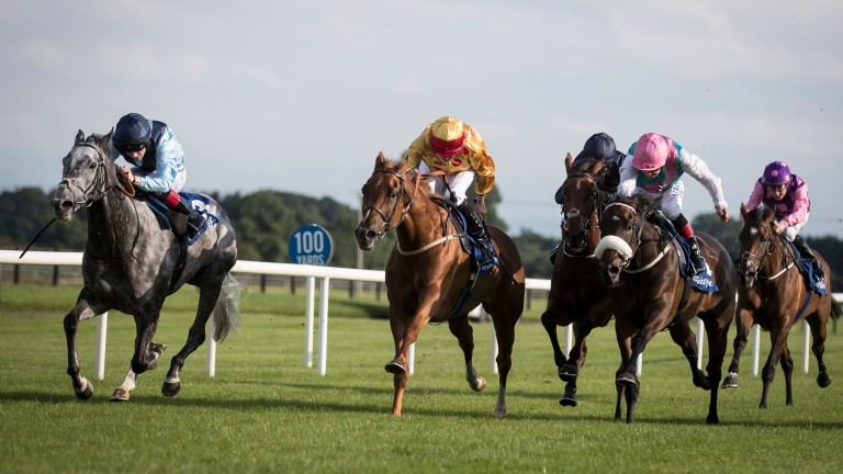 Realtra (left) runs out a convincing winner of the Brownstown Stakes at Fairyhouse