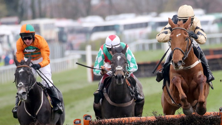 Yorkhill: the talented runner could revert to hurdles if he doesn't perform over fences at Leopardstown