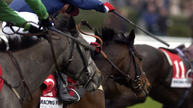 The whip: vital for safe racing or a stain on its image?