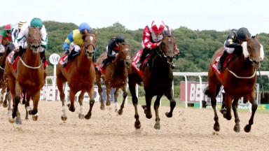 Kimberella (left) finishes third at Newcastle on Saturday after a far from smooth run