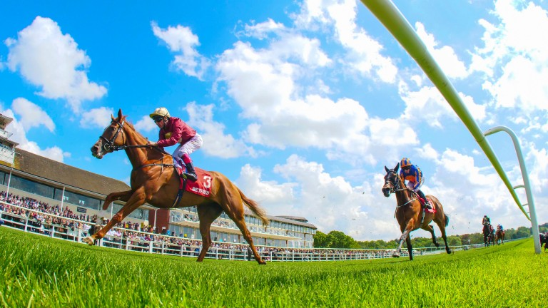 Hertford Dancer: emulated her granddam Rafha with victory in the Lingfield Oaks Trial