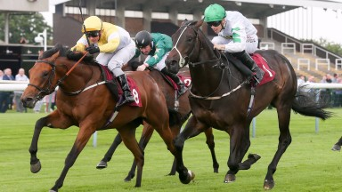 Staxton gets up for a shock 50-1 victory at Haydock