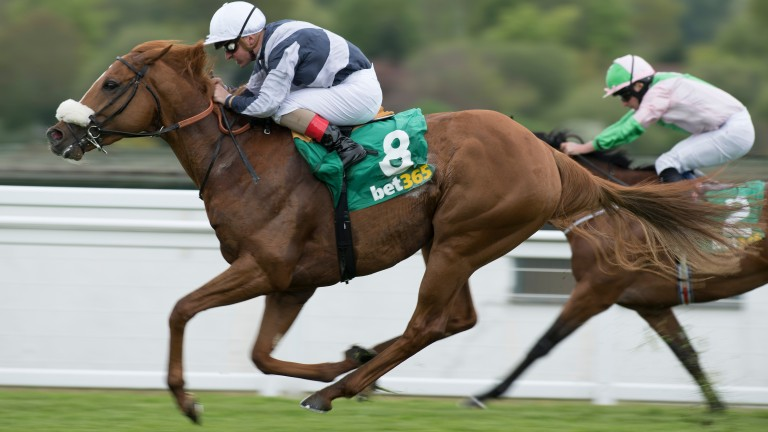 Ulysses gallops to victory over Deauville in the Gordon Richards Stakes
