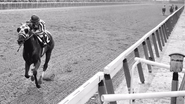 Secretariat: blitzes clear of his rivals in the 1973 Belmont Stakes