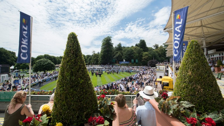 Spectator numbers are likely to be limited for the Coral-Eclipse at Sandown