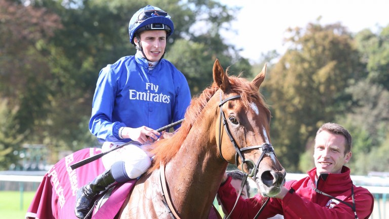 Wuheida: fit from a racecourse gallop at Chelmsford