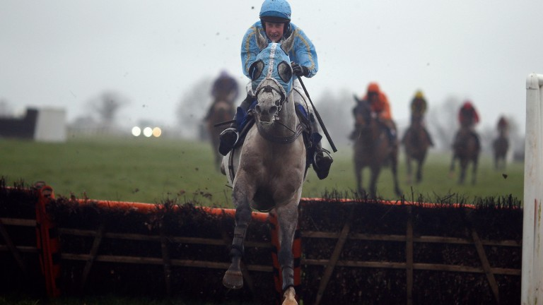 Thundering Home jumps the last on the way to victory at Plumpton in March under his Worcester rider Alice Mills