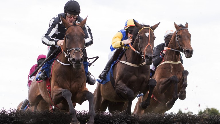 Showing the Commander's colours: Davy Russell (left) is a picture of concentration as he leads in the opening maiden hurdle before going on to score aboard An Caisteal Nuadh. The winner is in the silks of 2010 Cheltenham Gold Cup winner Imperial Commander