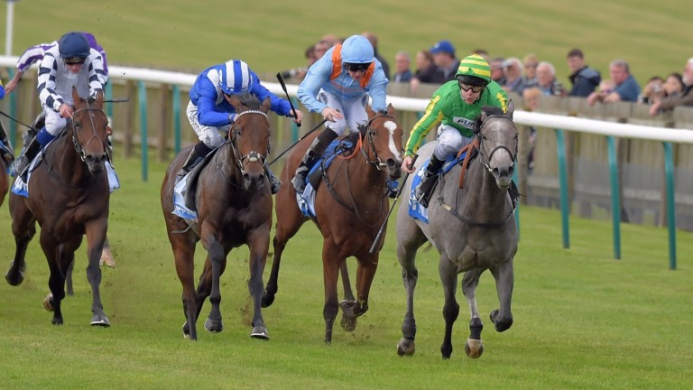 Mrs Danvers beat Saturday's Group 3 Coral Charge winner Battaash at Newmarket last October