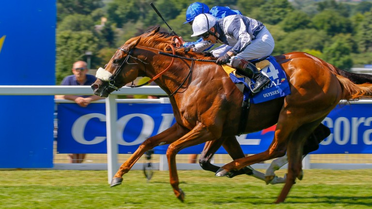 Ulysses: epic Coral-Eclipse winner on target for the King George at Ascot