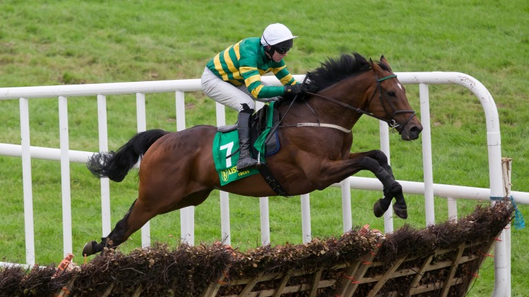 Timiyan: Gordon Elliott-trained Kilbeggan Midlands National winner tested positive for TCA