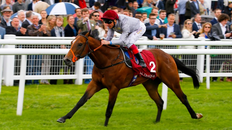 Denaar: Frankie Dettori's comeback ride at Newmarket on Thursday