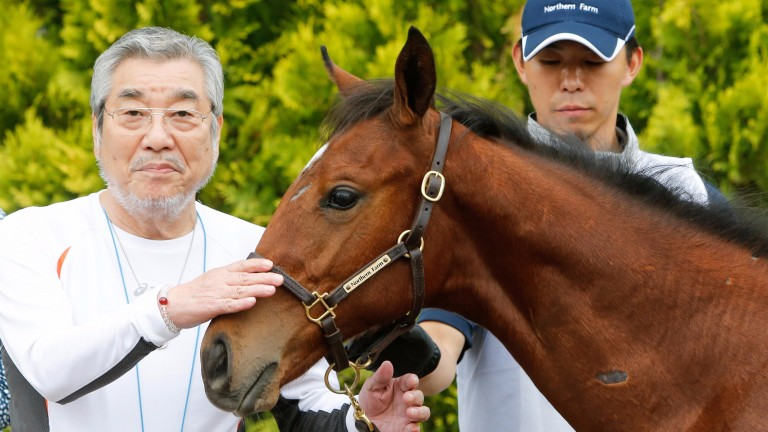 Riichi Kondo with the Deep Impact colt after selling in the ring
