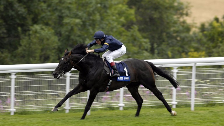 Yeats: legendary stayer was 'mad about apples'