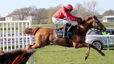 Red Tornado: on course for a repeat bid in Summer Hurdle at Market Rasen